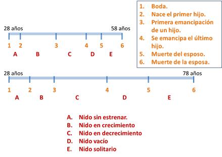 diagramadedosciclos