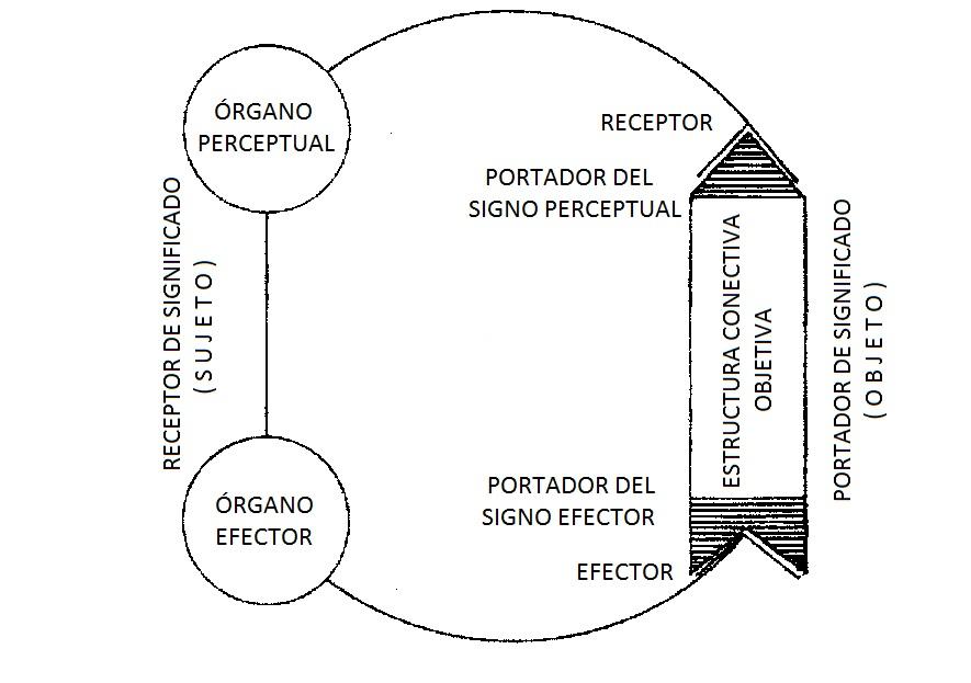 Fig 2_Funktionkreis.jpg